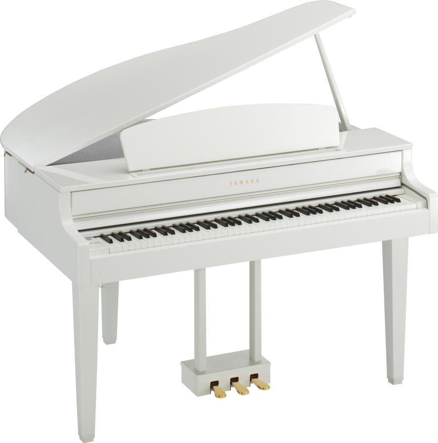 Les pianos SCHIMMEL